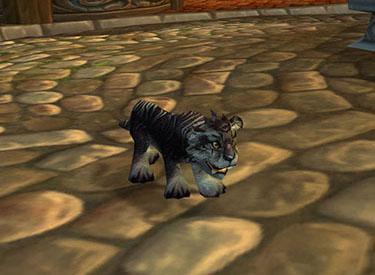 WoW TCG Loot: Nightsaber Cub  Winterspring